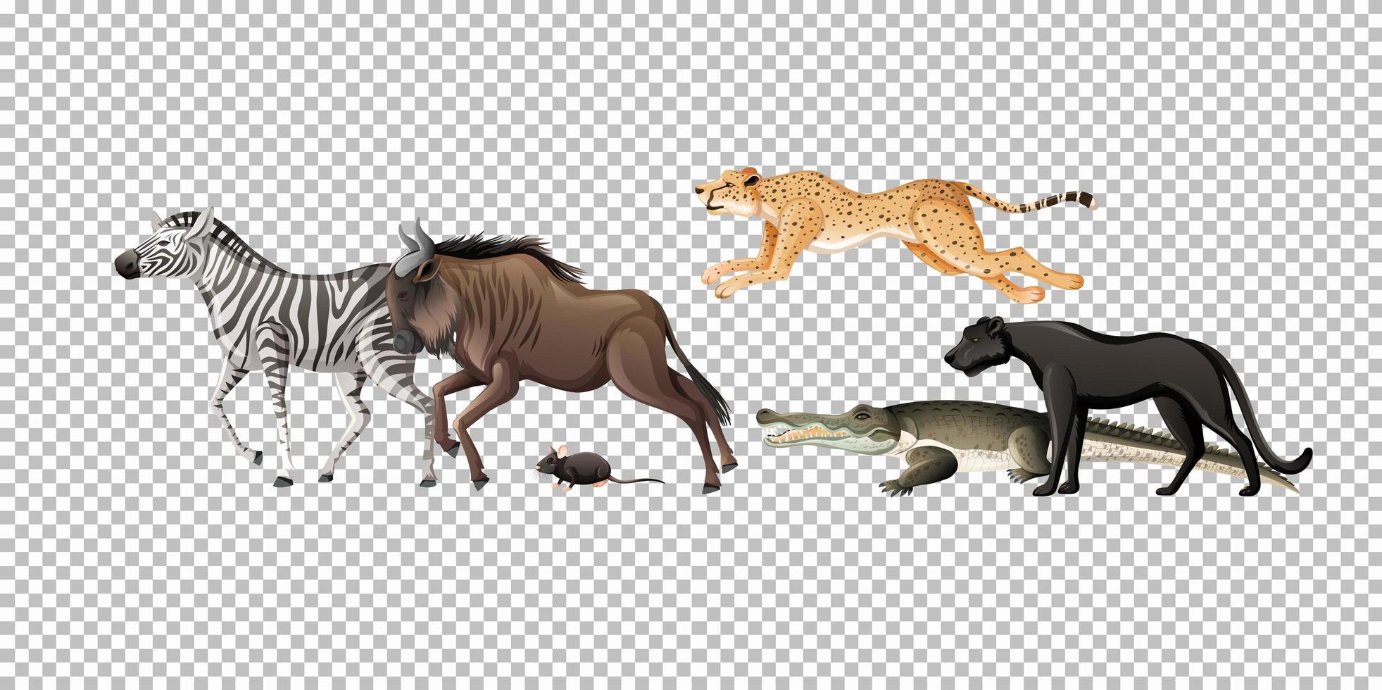 grupp av vilda afrikanska djur på transparent bakgrund vektor