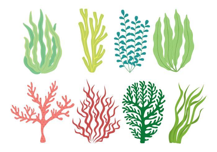havsgräs ikonuppsättning vektor