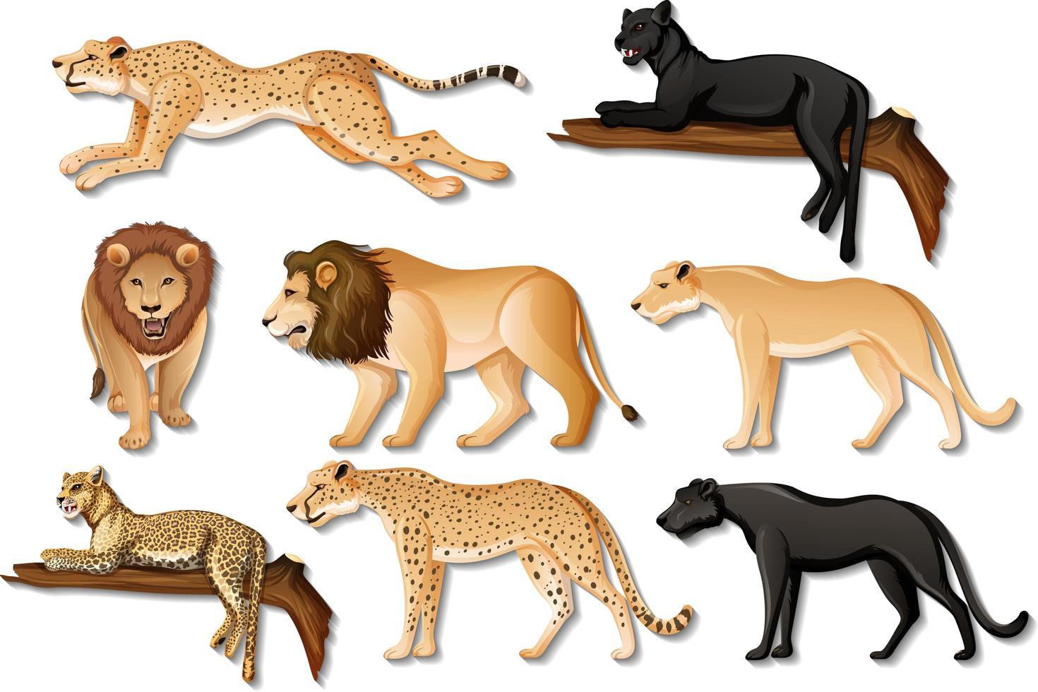 uppsättning isolerade vilda afrikanska djur på vit bakgrund vektor