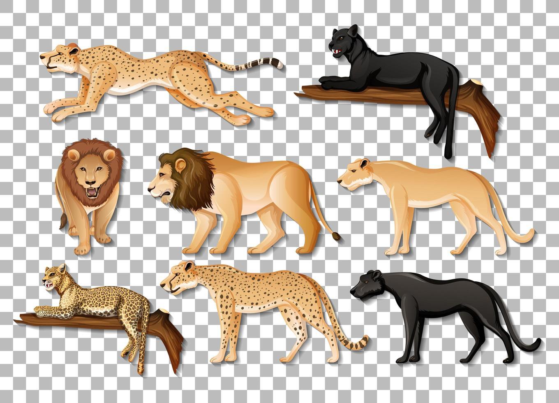 Satz von isolierten wilden afrikanischen Tieren auf transparentem Hintergrund vektor