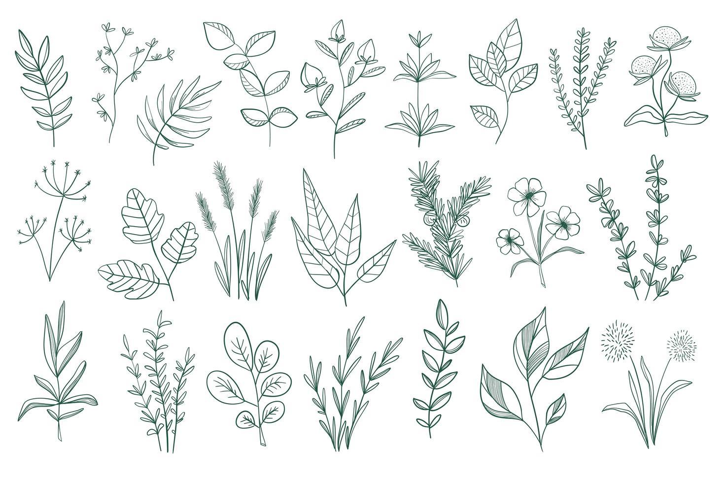 Bündel von floralen dekorativen Elementen vektor