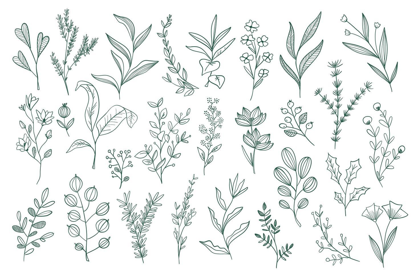 handgezeichnete florale Kritzeleien gesetzt vektor