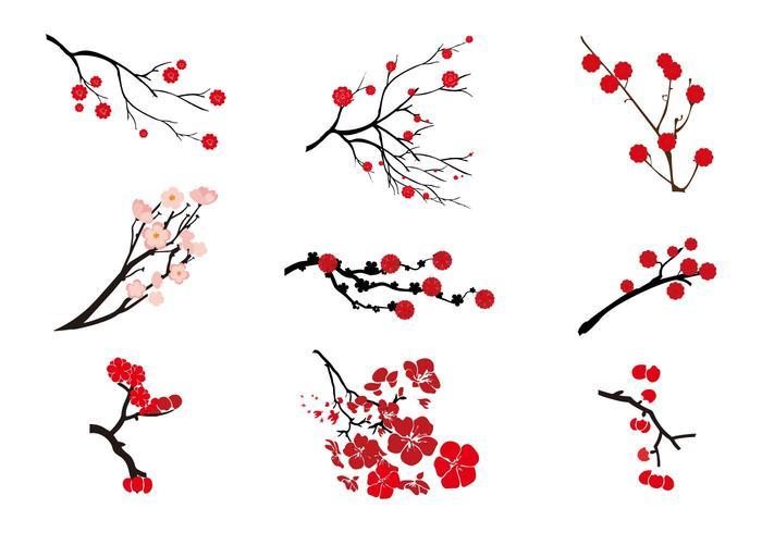 Kostenlose Pflaumenblüten-Vektor vektor