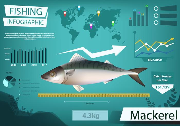 Makrele Vektor