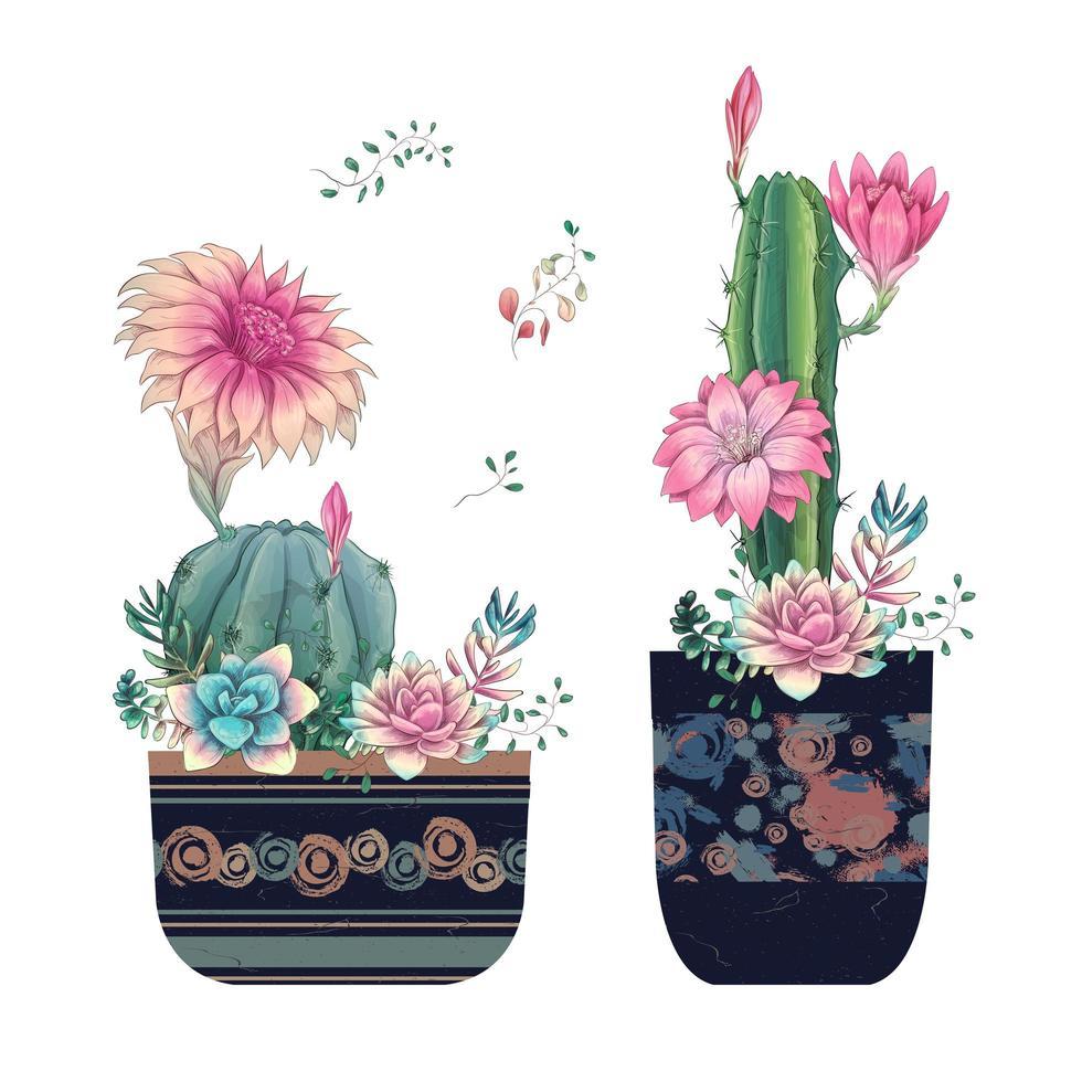 Sukkulenten und Blumen in Töpfen handgezeichnetes Aquarell vektor