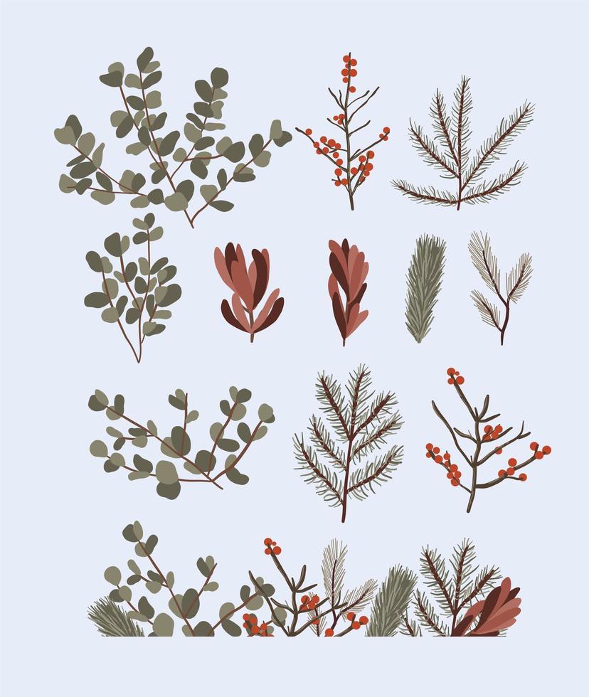 Weihnachtspflanzen Dekor Elemente gesetzt vektor