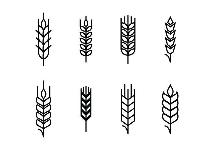 Weizen Ohren stellen Icons vektor