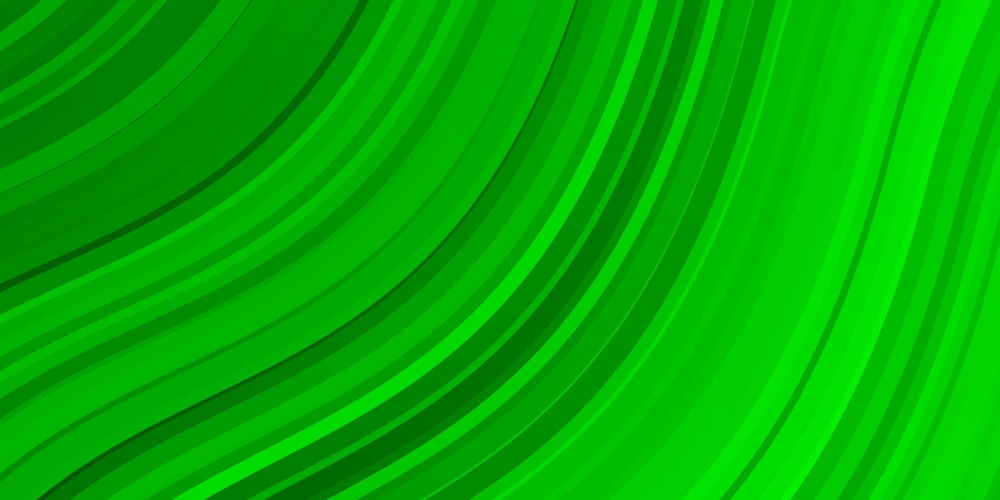 hellgrünes Layout mit Kurven. vektor