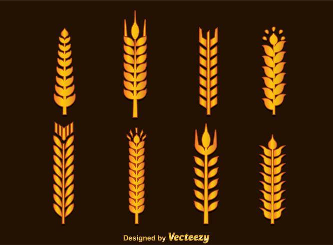 Weizen-Ohren-Vektor vektor