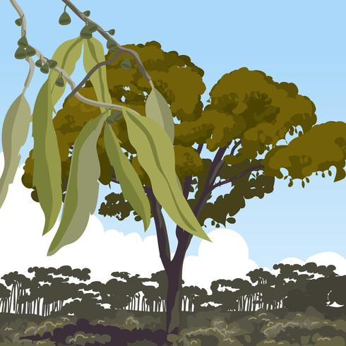 Landskap med Gum Tree Vector