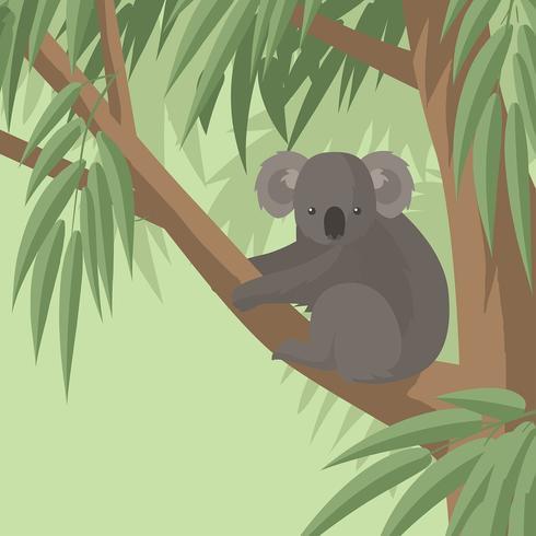 Koala i Gum Tree Free Vector