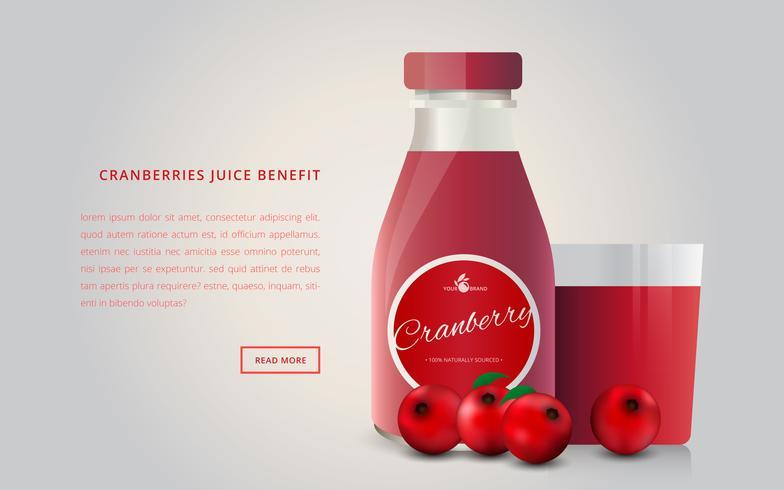Cranberries Juice Advertising Mall vektor