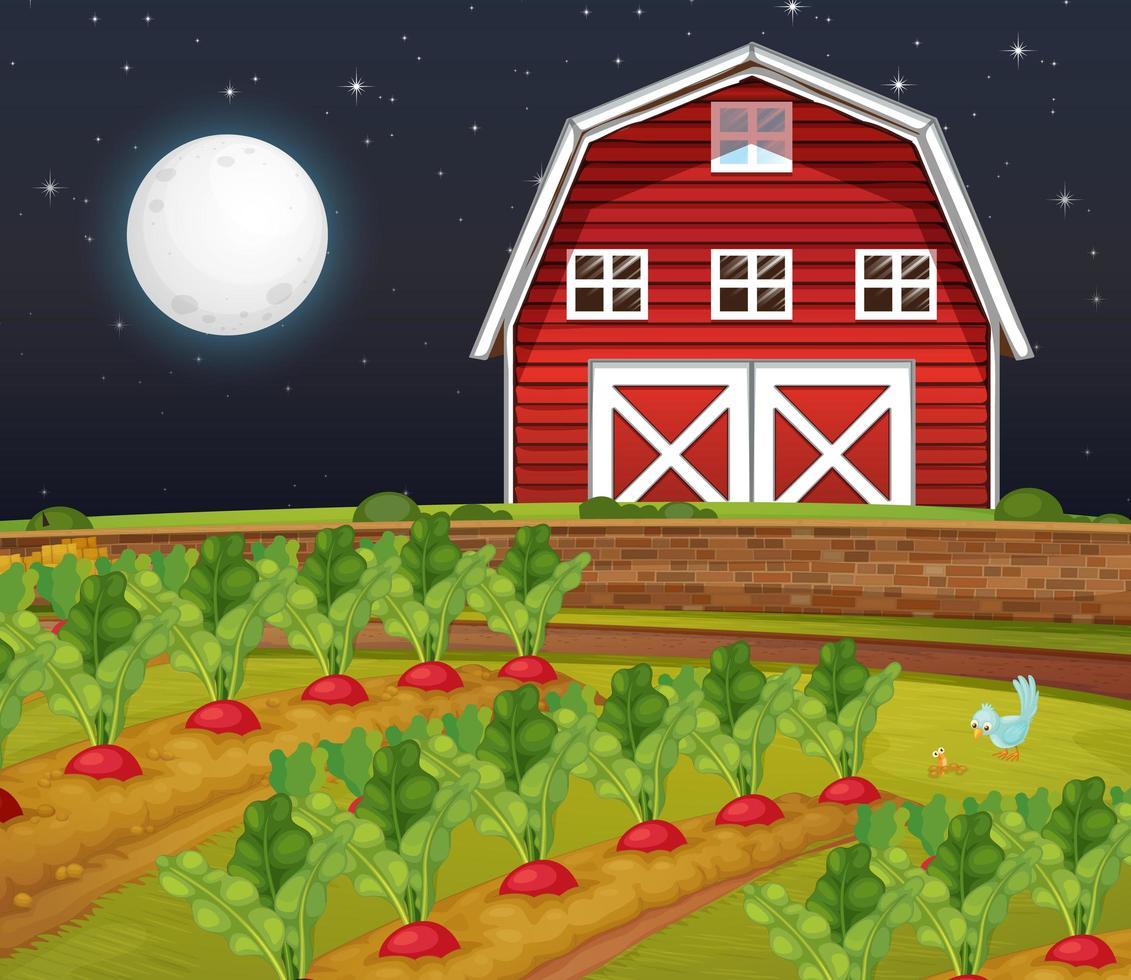 Bauernhofszene mit Scheune und Karottenfarm bei Nacht vektor
