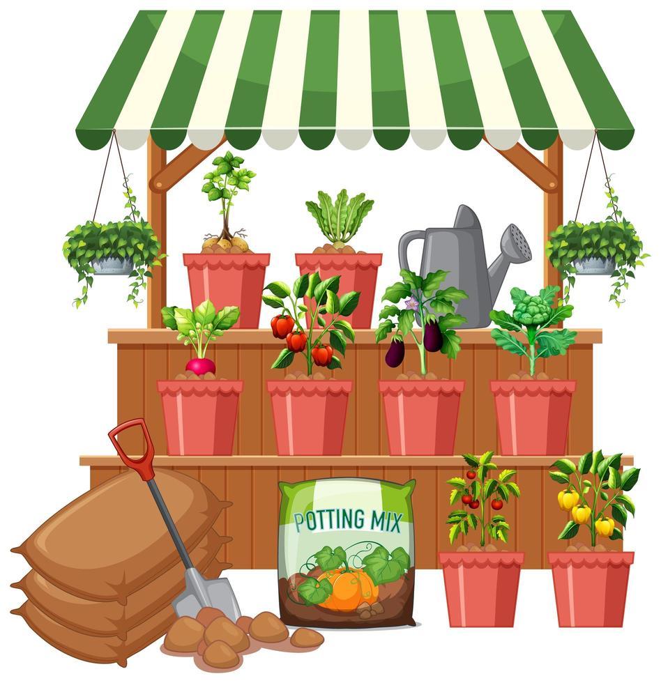 växtbutik med många grönsaksträd på vit bakgrund vektor