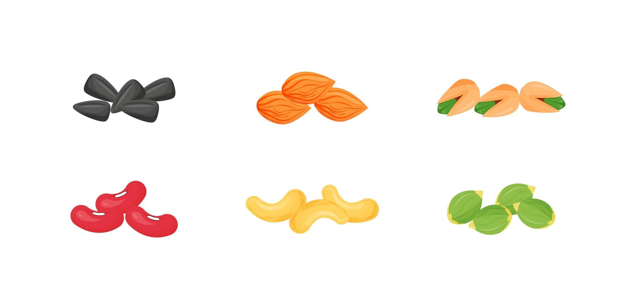 Samen, Nüsse, Bohnen gesetzt vektor
