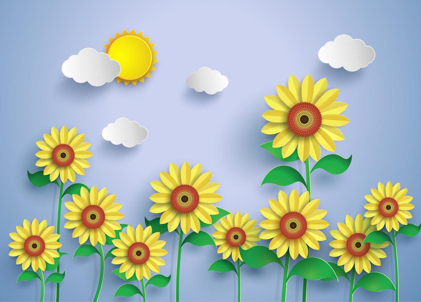 Feld der Sonnenblumen vektor