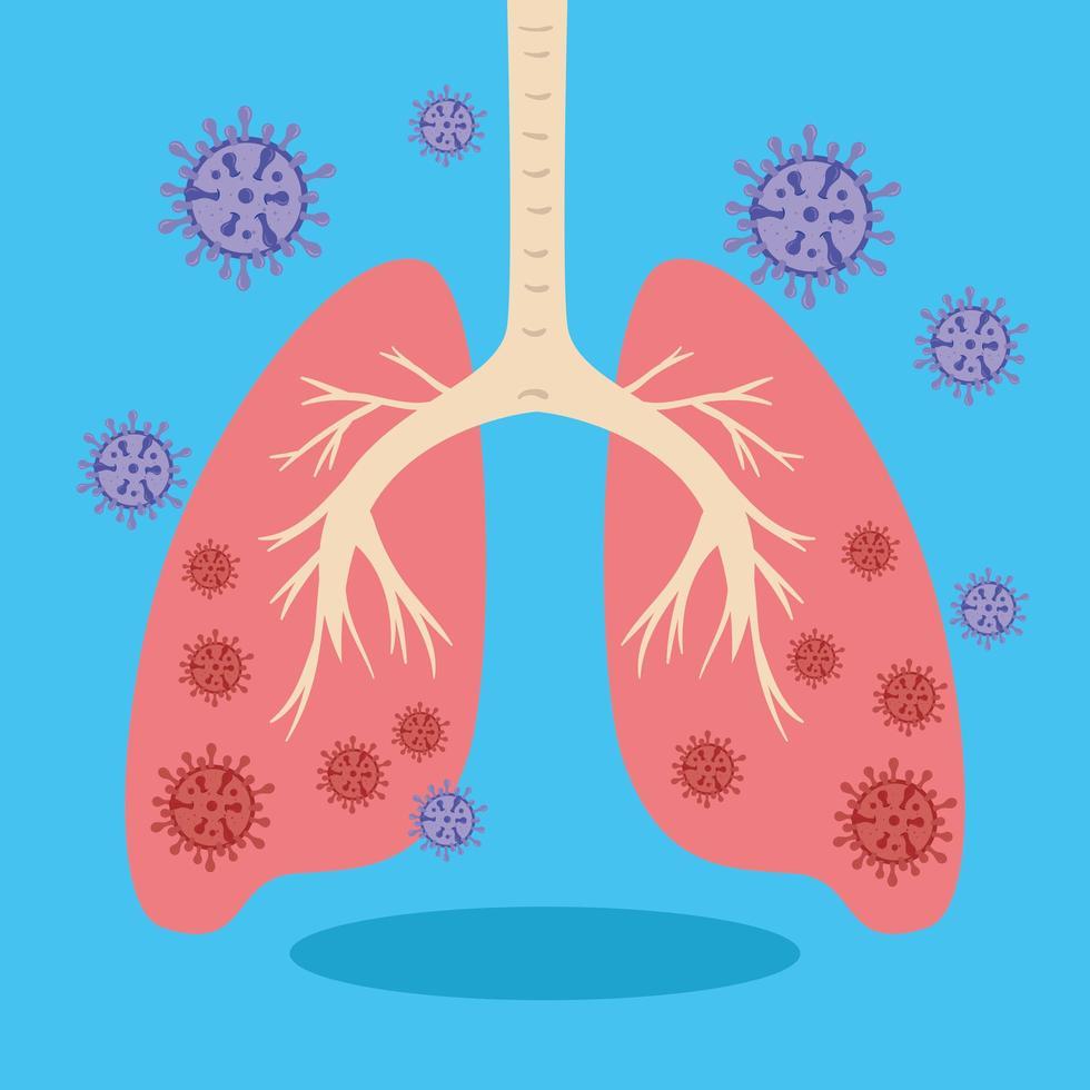 infekterade lungor med koronavirus vektor