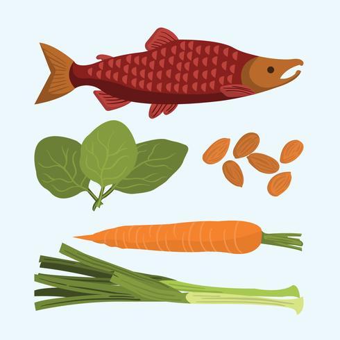 Super-Food-Abbildung vektor