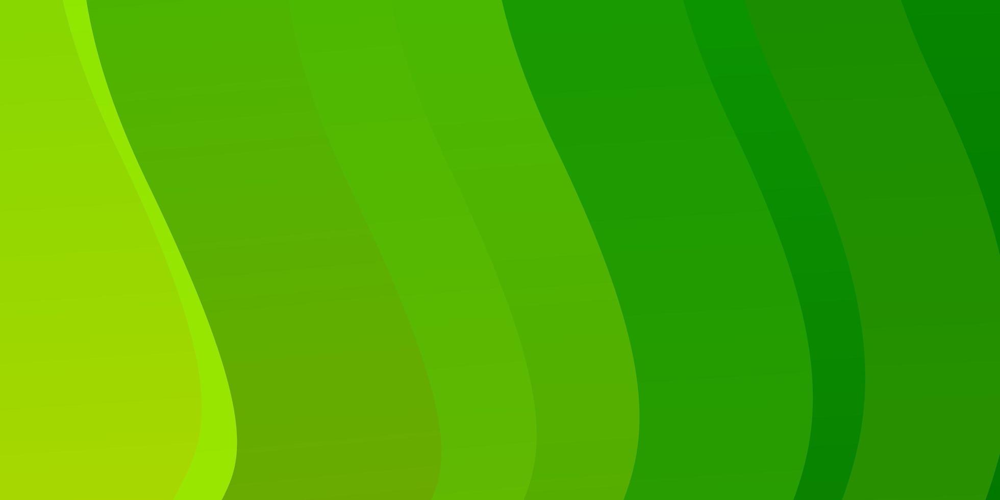 hellgrünes Vektormuster mit Kurven. vektor