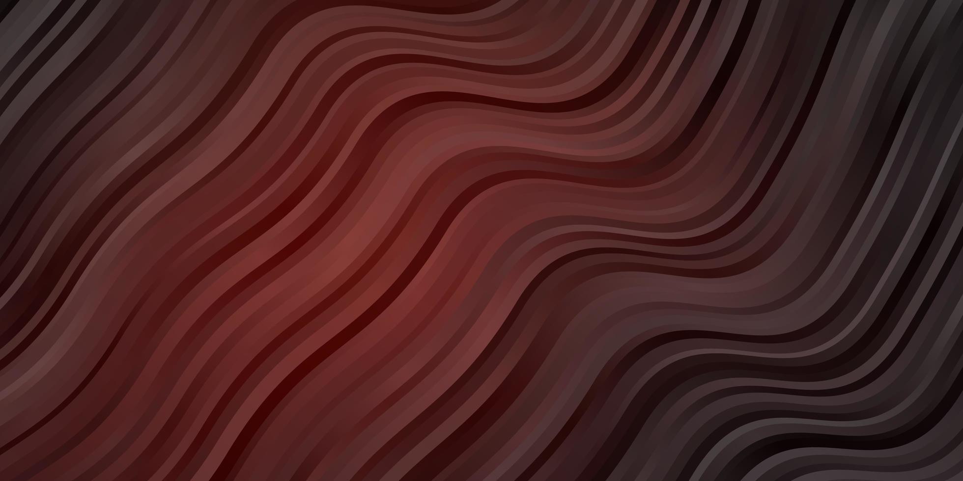 mörk röd vektor bakgrund med böjda linjer.