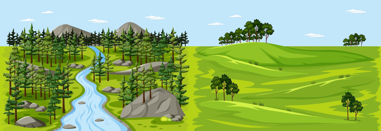skog natur landskap scen och tom äng landskap scen vektor