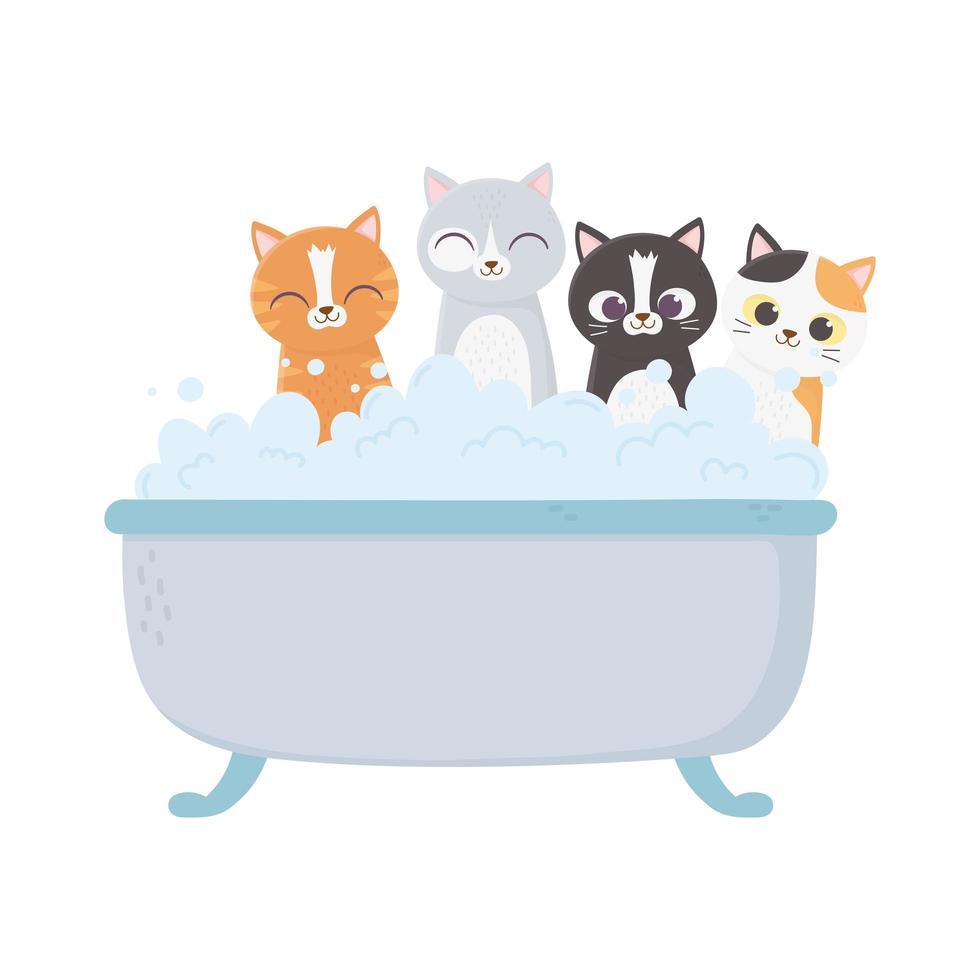 små katter i badkaret grooming husdjur isolerad på vit bakgrund vektor