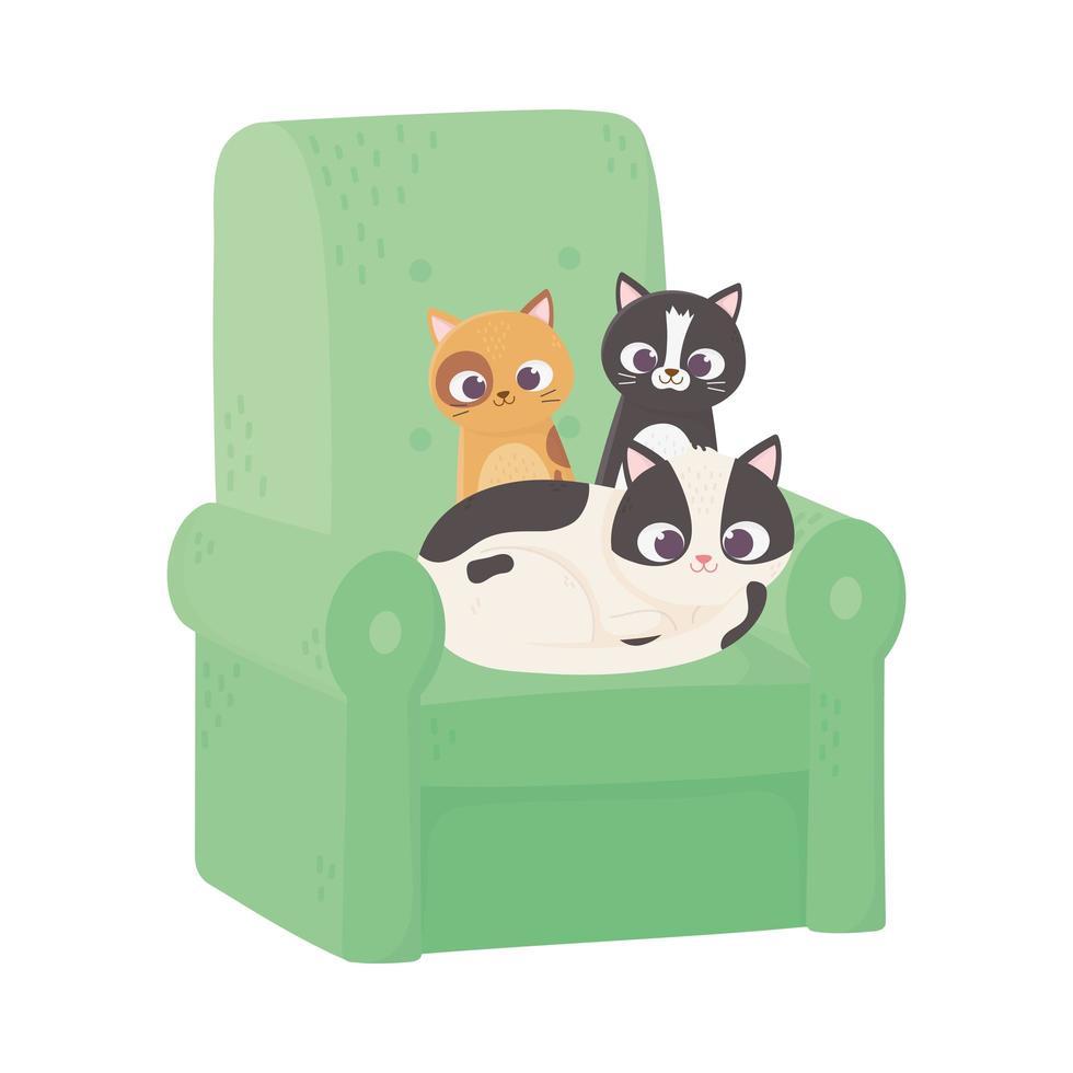 söta katter olika raser i soffatecknad film vektor