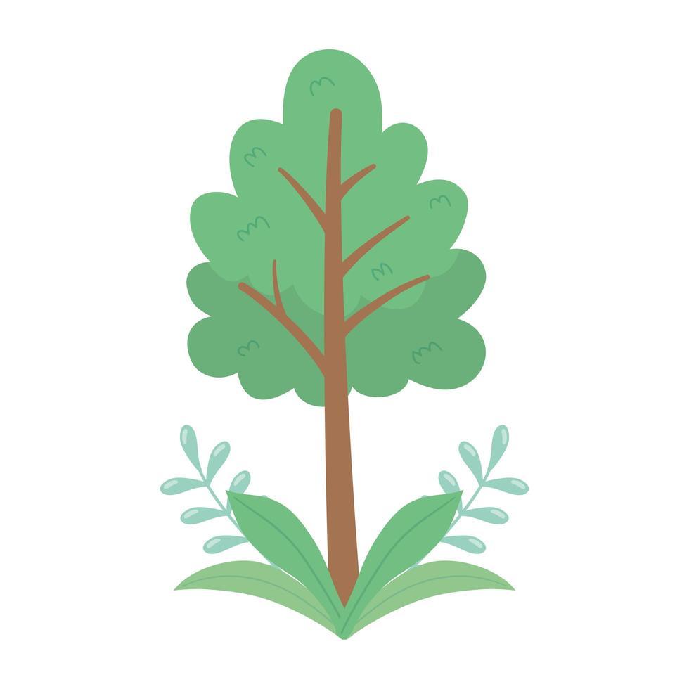 Baum Laub Zweige verlässt Natur isoliert Icon Design vektor