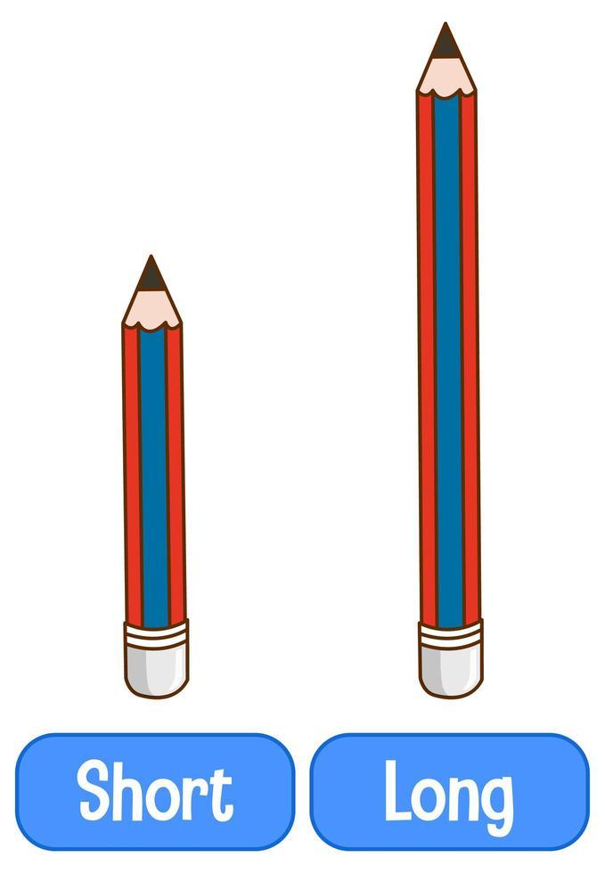 motsatta adjektiv ord med kort och lång vektor