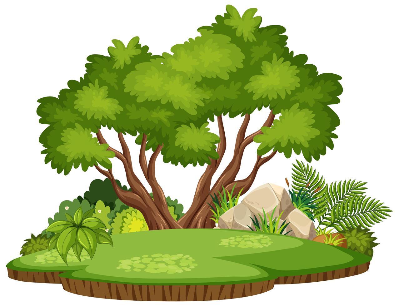 isolerad natur skog ö vektor