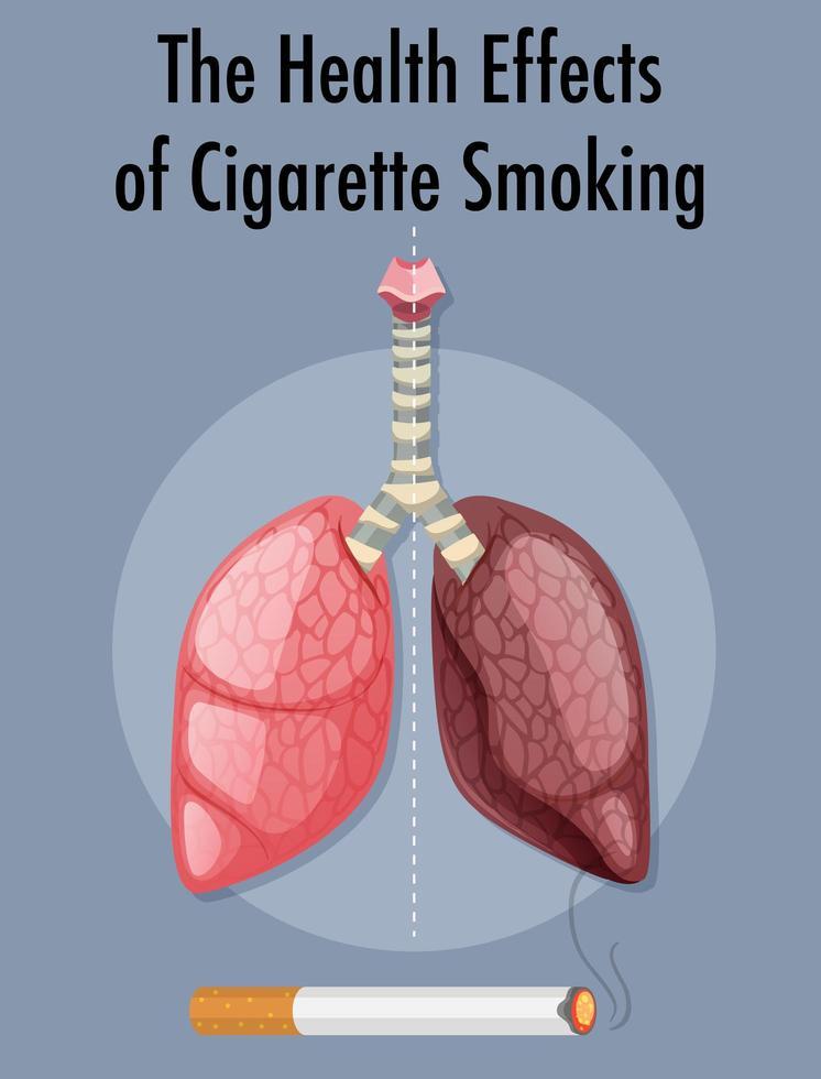 affisch om hälsoeffekter av cigarettrökning vektor