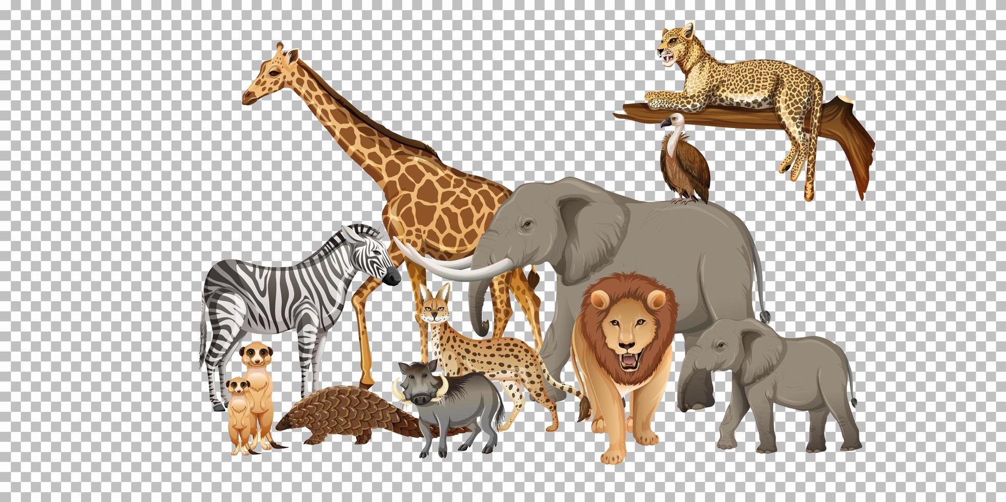 grupp av vilda afrikanska djur vektor