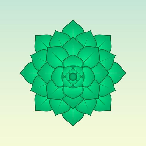 Grön Suckulent Plant Illustration vektor