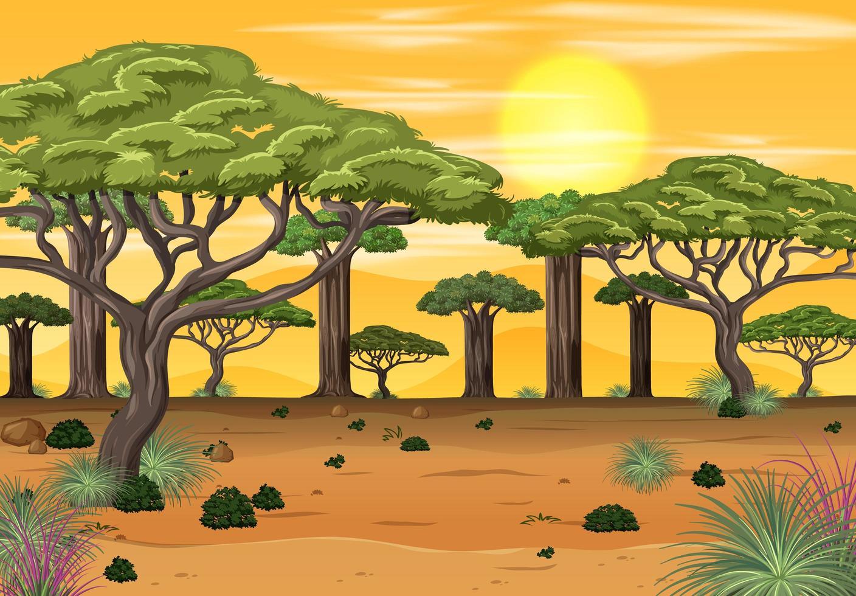 afrikanische Waldlandschaft zur Sonnenuntergangszeit vektor