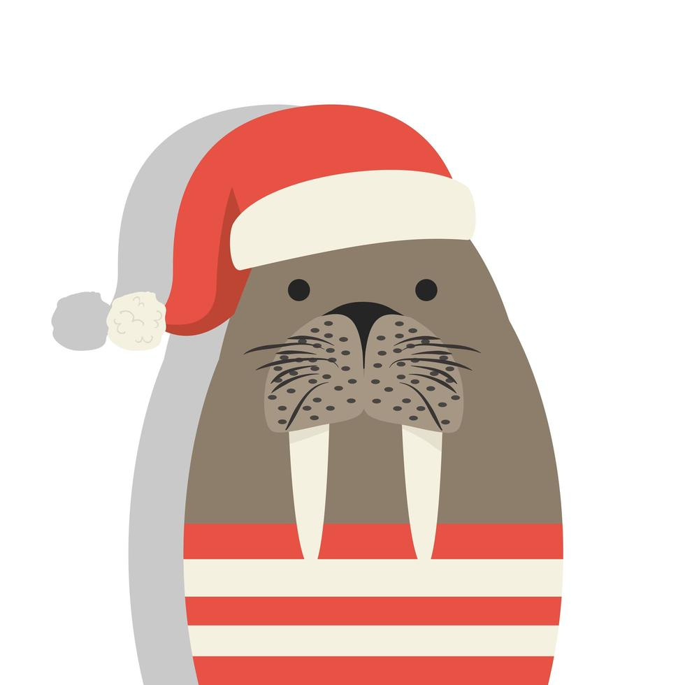 süßer Seemann Seelöwe mit Weihnachtsmütze vektor