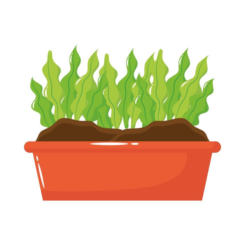 Zimmerpflanze im quadratischen Topf flache Stilikone vektor