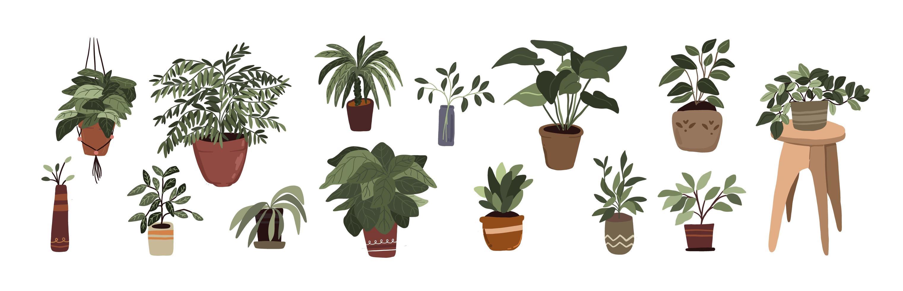 interiör krukväxter dekorelement ställa in klistermärke grön tumme för bullet journal vektor