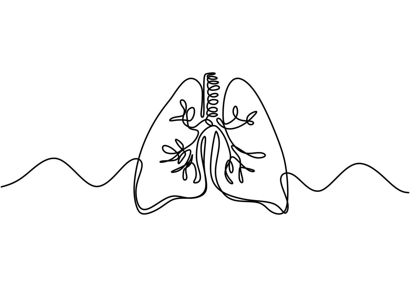 enda kontinuerlig linjekonst av lungorna. lungor mänskliga organ en linje illustration. vektor
