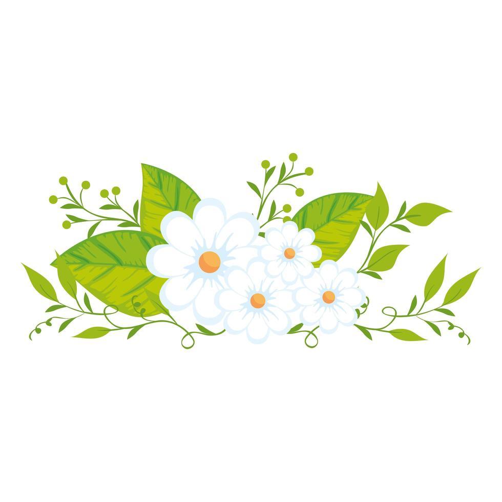 niedliche Blumen mit Blättern isolierte Ikone vektor