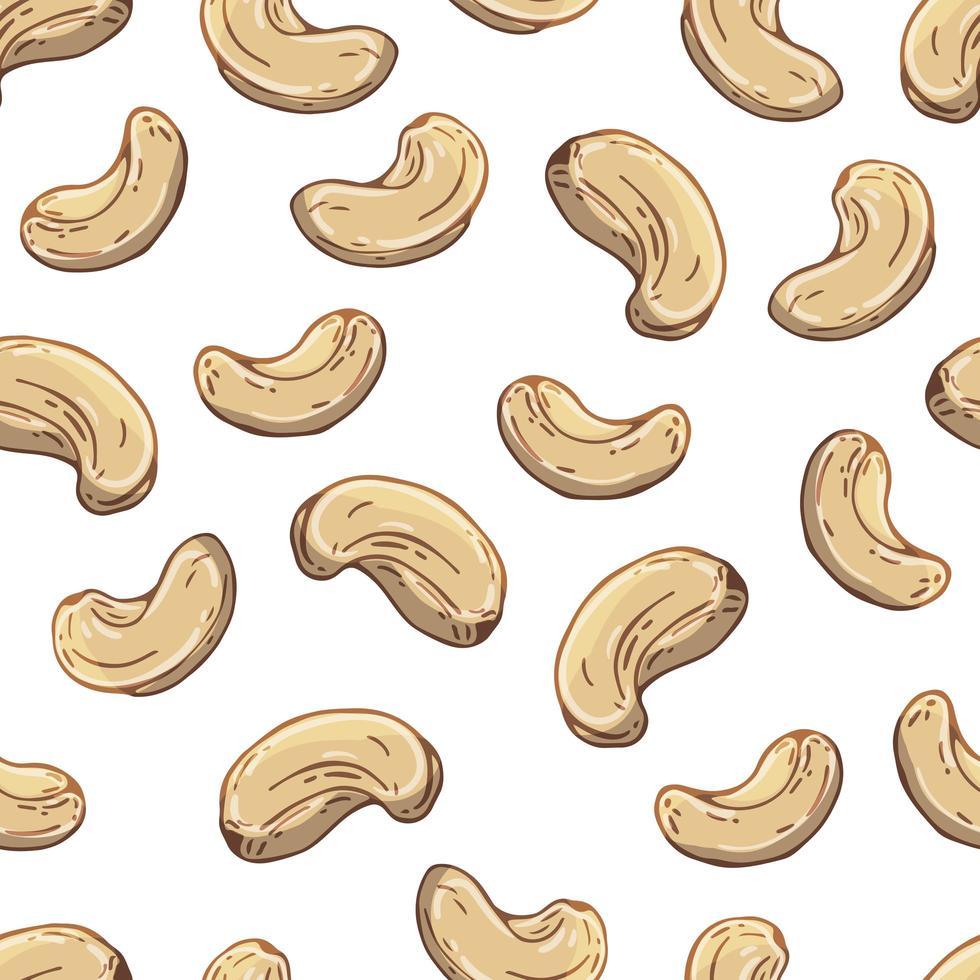 mönster av vektorillustrationer på näringstema uppsättning cashewnötter. realistiska isolerade objekt för din design. vektor