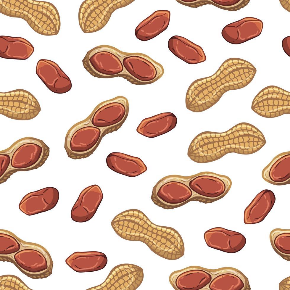 Muster von Vektorillustrationen auf dem Ernährungsthemasatz der Erdnüsse. realistische isolierte Objekte für Ihr Design. vektor