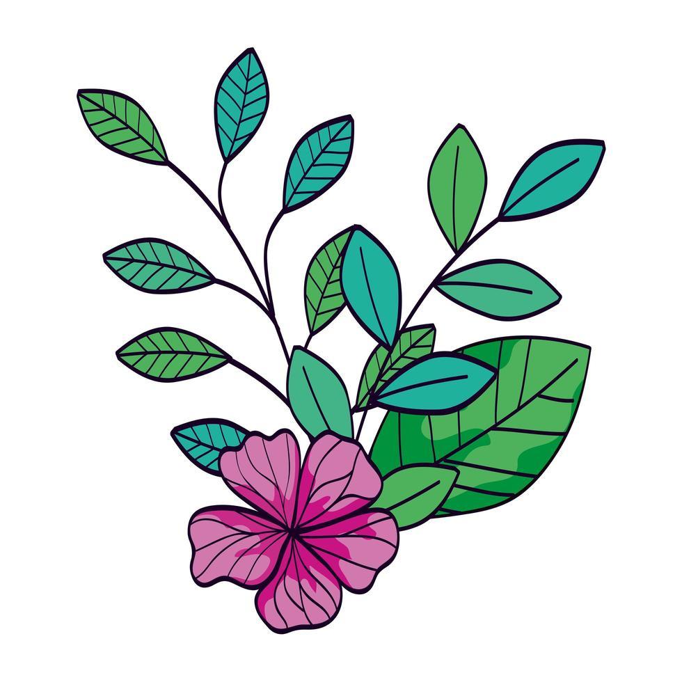 süße Blume lila Farbe mit Zweigen und Blättern vektor