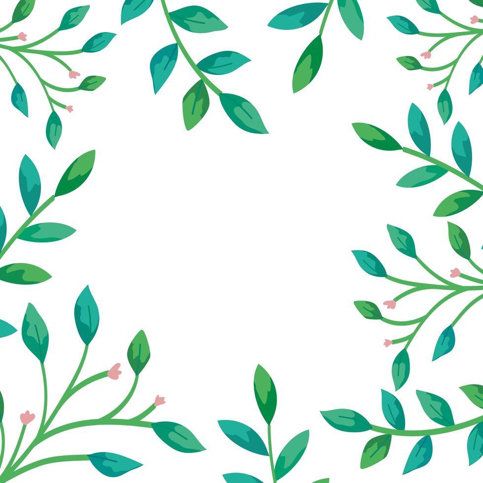 Rahmen von Zweigen mit Blättern natürlich vektor