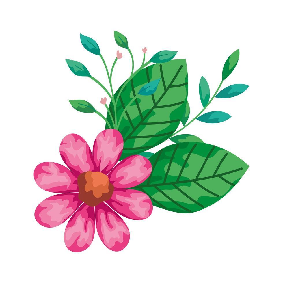 niedliche Blume rosa mit Zweigen und Blättern isolierte Ikone vektor