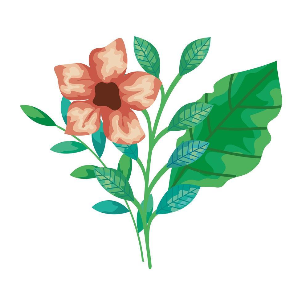 niedliche Blumen mit Zweigen und Blättern isolierte Ikone vektor