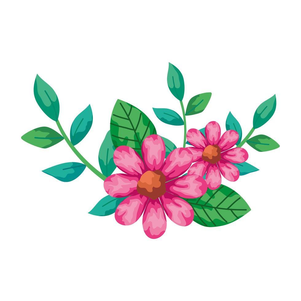 niedliche Blumen rosa mit Zweigen und Blättern isolierte Ikone vektor