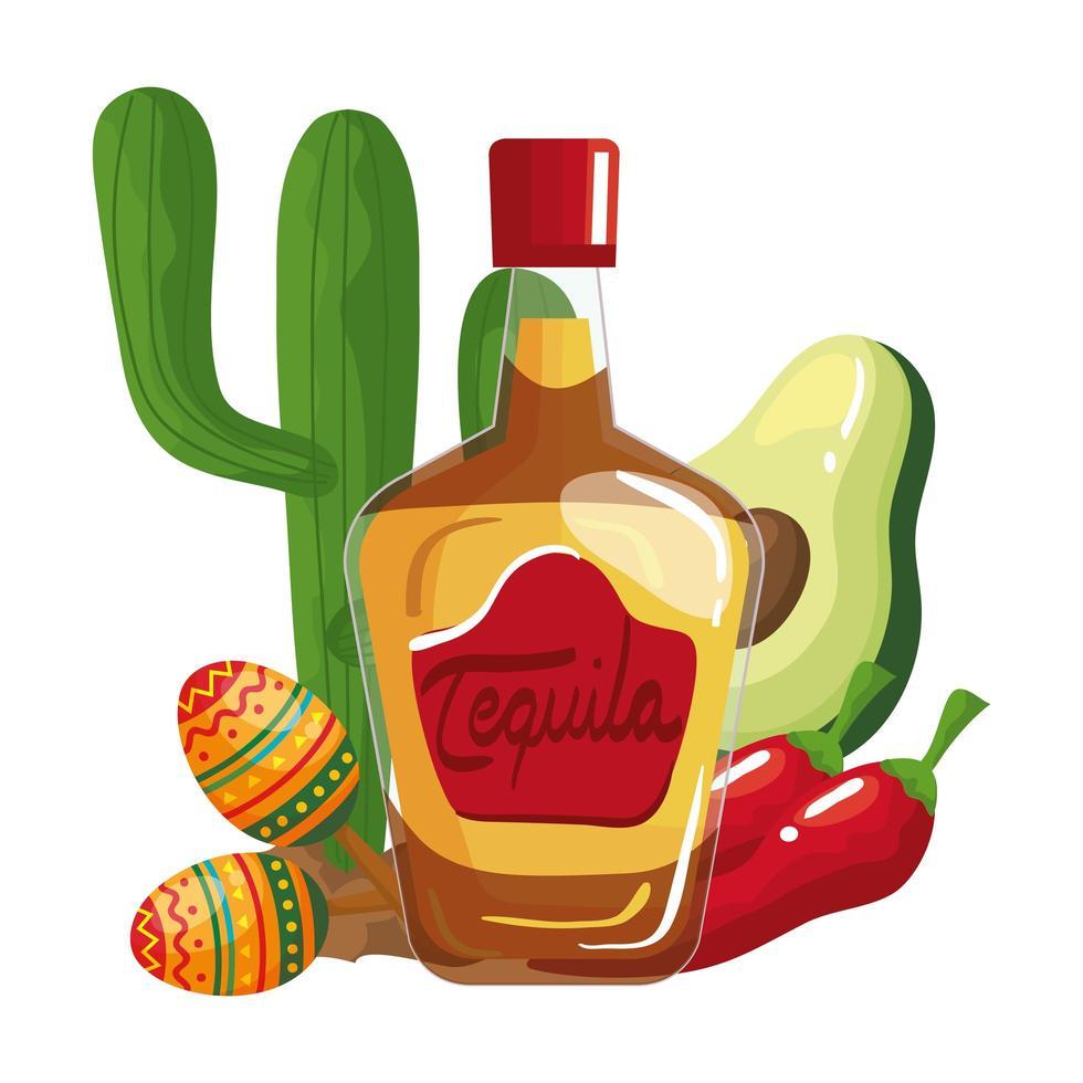 mexikansk tequila flaska chili avokado maracas och kaktus vektor design