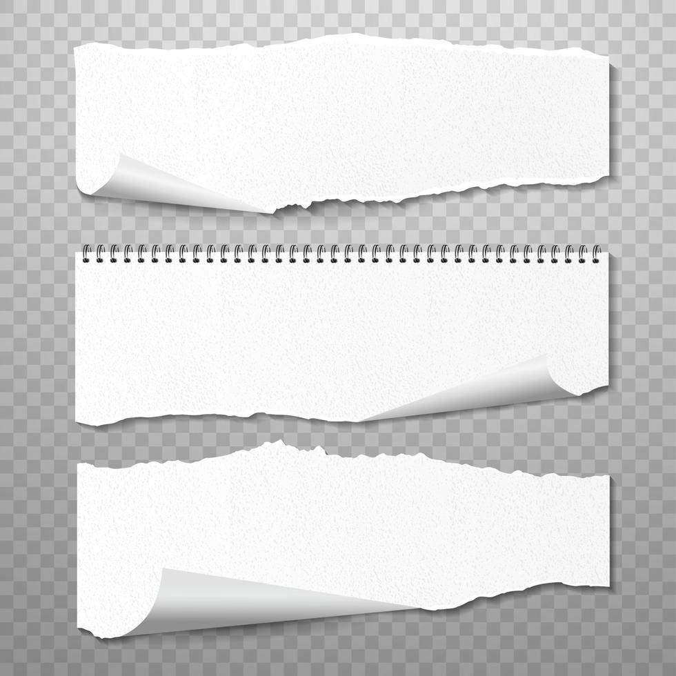 horizontale zerrissene Papiere Vektorsatz. realistischer 3D-Render vektor