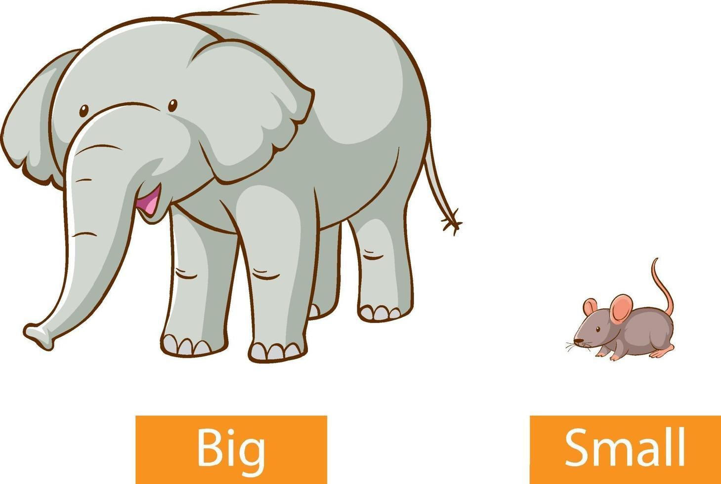 motsatta adjektiv ord med stora och små vektor