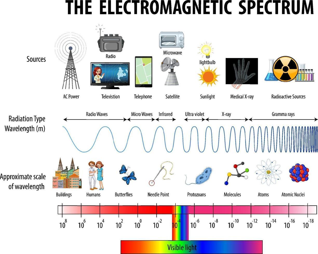 vetenskap elektromagnetiska spektrum diagram vektor